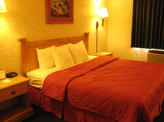 Comfort Inn & Suites Near Temecula Wine Country: King Bed (bed was a bit hard for my taste)