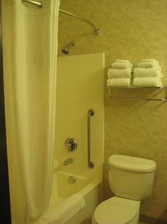 Comfort Inn & Suites Near Temecula Wine Country: Sparkling clean bathroom