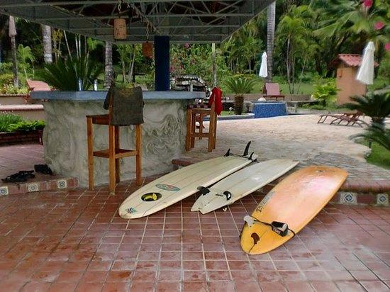Peaks 'n Swells Surf Camp: Surfs up