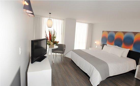 Hotel El Ejecutivo: Deluxe King Room