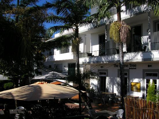 The Flame Tree Madeira: Vila Camacho