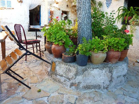 Mantar Evi: The courtyard
