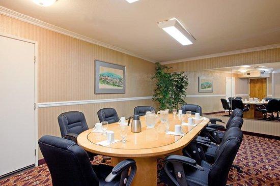 Holiday Inn San Clemente: Board Room