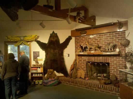 Abbott's Mill Nature Center: Nature Center