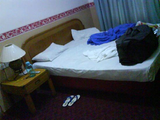Heeren Inn: The second time i went, I took room 205. was bed bug free