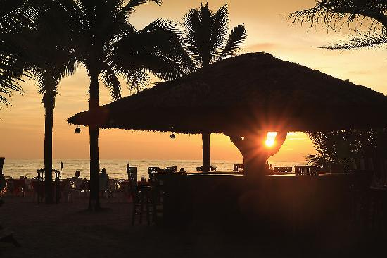 The Beach Khaolak: Delicious food with the light songs and nice location on the beach...