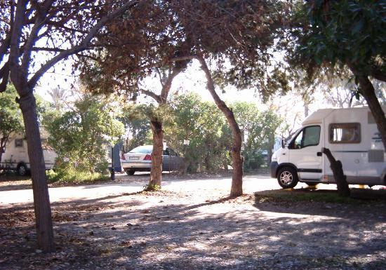 Camping Malvarrosa de Corinto: Parcelas caravanas/autocaravanas