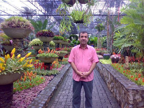 Herb Garden Pattaya: Tropical Garden
