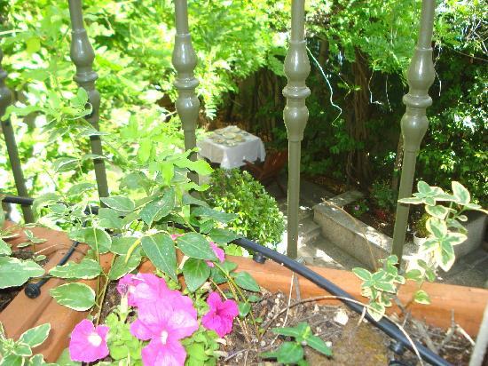 Hotel Posada Don Jaime: Jardín desde nuestra terraza