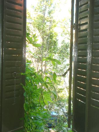 Hotel Posada Don Jaime: nuestra ventana al jardín
