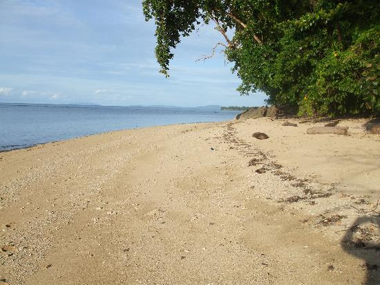 Bunaken Cha Cha Nature Resort: Beach few metres north of resort