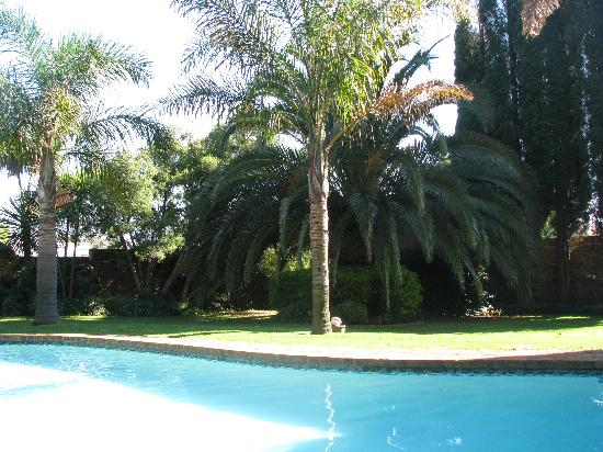Aero Guest Lodge: Swimming pool