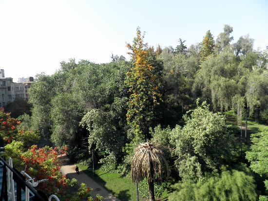 Foresta: Vista desde desayunador del Hotel