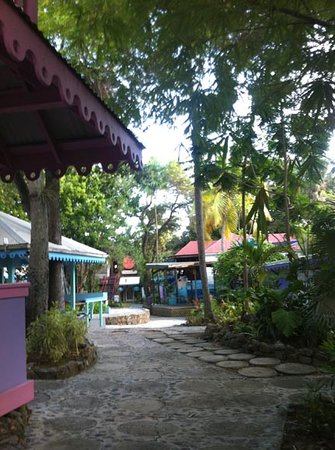 Water Candy: Our Tropical Garden Location