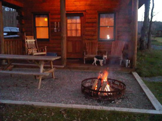 Finger Lakes Mill Creek Cabins: dog outside cabin