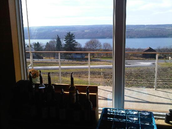 Finger Lakes Mill Creek Cabins: wine tasting