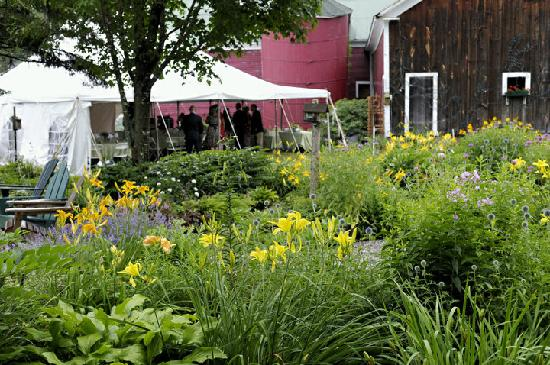 Farm by the River Bed and Breakfast with Stables : Beautiful Flower Gardens in the property