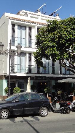 Hotel Avenida 31 사진