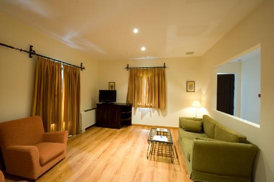 Santa Cruz De Mudela, Spanyol: Habitación con salón