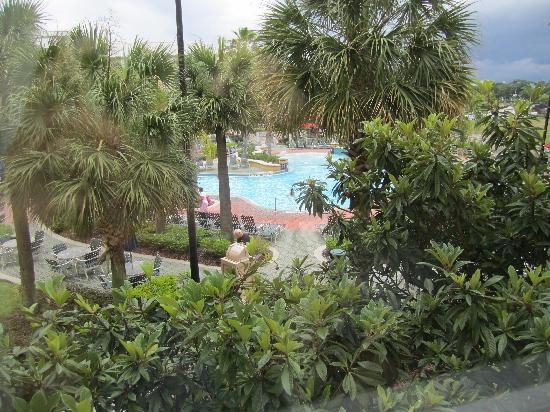 Residence Inn Orlando at SeaWorld: view from our room