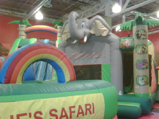 Bounce and play at Charlie's Safari today!
