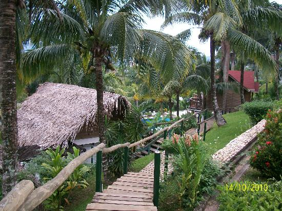 Hotel Villa Caribe: jardines
