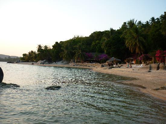 Harmony Beach Resort : the resort