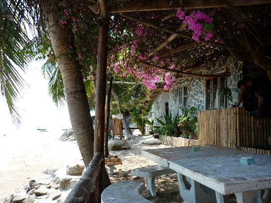 Harmony Beach Resort : the bar/restaurant