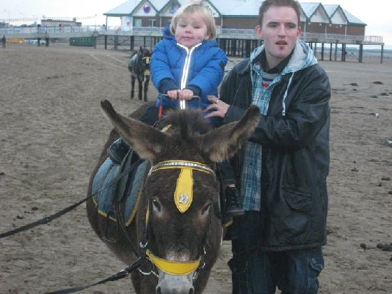 Walkers Farm Cottages: donkey ride on weston beach
