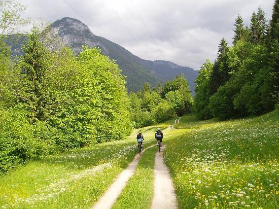Gästehaus Scheil Ferienwohnungen: Radfahrer in der Umgebung