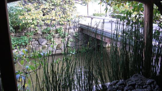 Shiraume: View from Hatune. See the mini bridge.