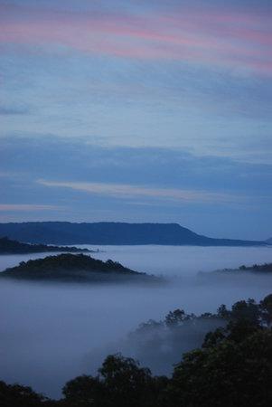 Nunyara Retreat: Winter morning view towards Tamborine