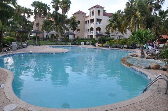 Area piscina picture of divi village golf and beach resort oranjestad tripadvisor - Divi village golf and beach resort reviews ...