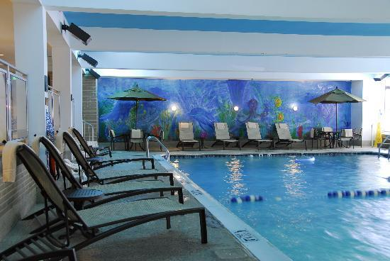Holiday Inn Baltimore-Inner Harbor: Baltimore's Largest Indoor pool