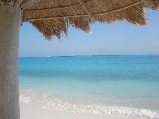 Hotel Riu Cancun: Heaven