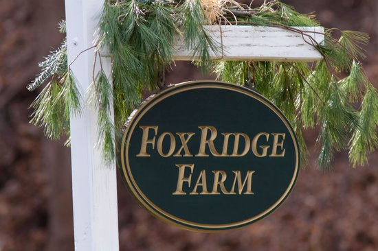 Fox Ridge Bed and Breakfast