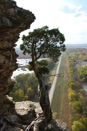 Chicago Cars Direct >> Inspiration Point - Picture of Shawnee National Forest ...