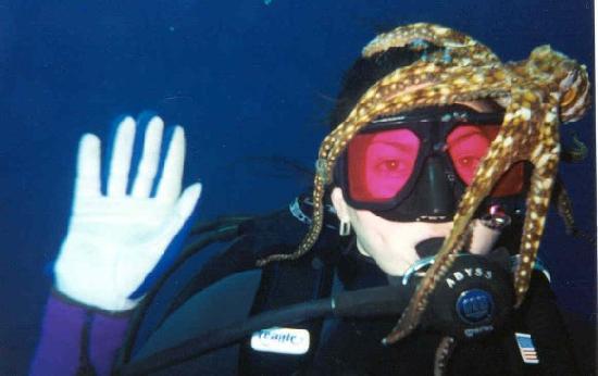 Alex's Aquatic Adventures: hitchhiker