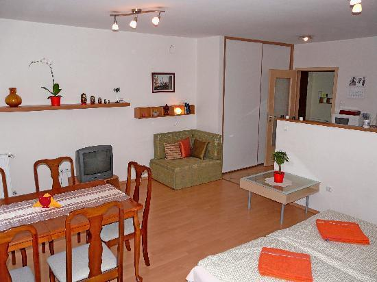 Raday Central Apartment: aday Central Apartment: 2.apartment room
