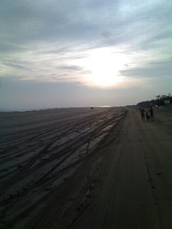 Mandarmani Beach: A VEIW FROM HATHI VAN