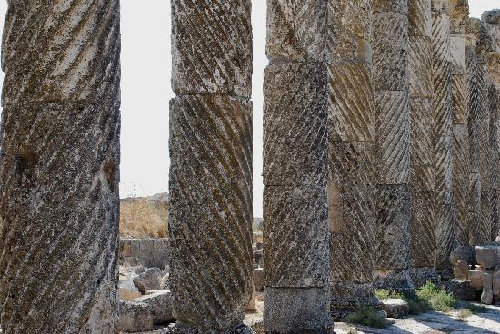 Apamea: Spiral columns