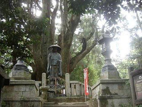 Shikoku, Nhật Bản: 一本杉庵