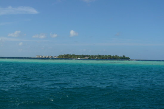 Ellaidhoo Island: The island