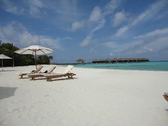 Maafushivaru: Water Villa & Beach