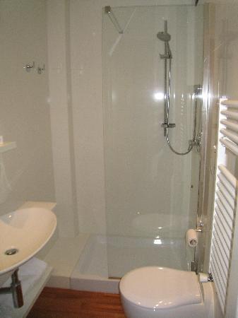 Hotel Napoleon: toilet/bathroom (little small area)