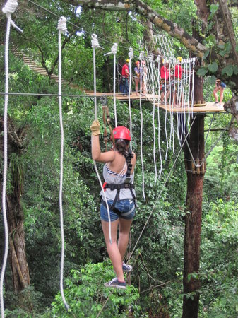 Bastimentos Sky Zipline Canopy Tour : Rope Course Time!