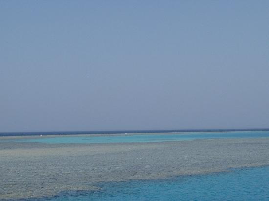 Hurghada, Egypt: Reef