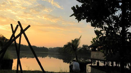 Kolad, Inde : morning