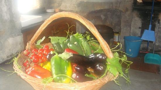 La Grotta dei Fichi: Vegetables from the Villa garden