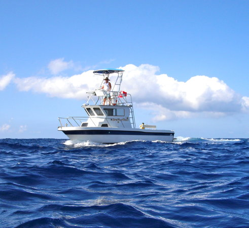 Coral Reef Snorkel Adventures Photo